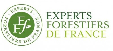 Experts-Forestiers-de-France_LOGO-et-TEXTE-400x275
